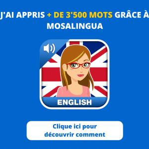 Découvrez comment j'ai appris plus de 3500 mots avec mosalingua