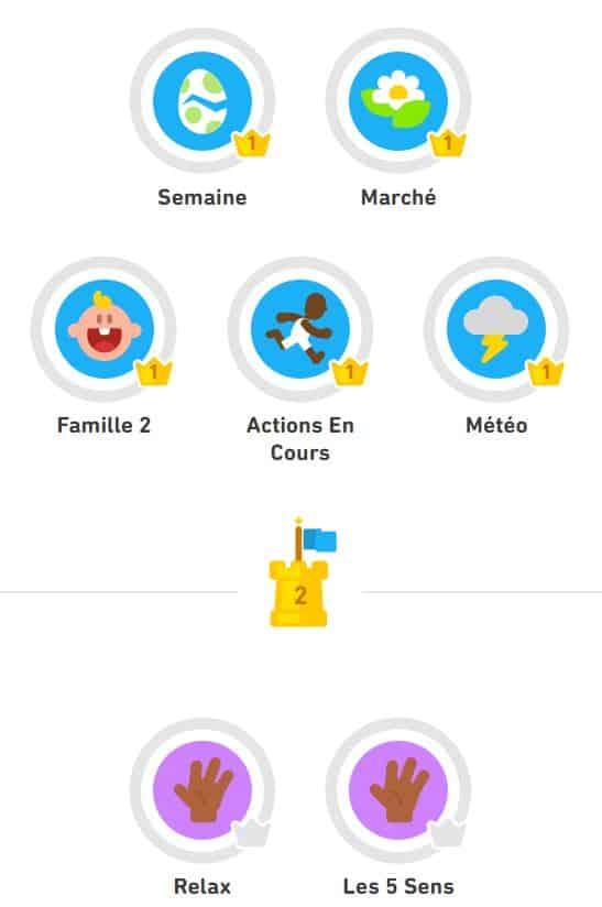 Suivi de la progression sur l'application Duolingo